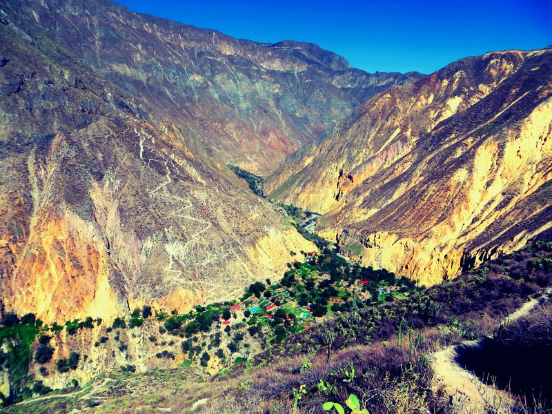 Colca Canyon Trek And Oasis Overnight