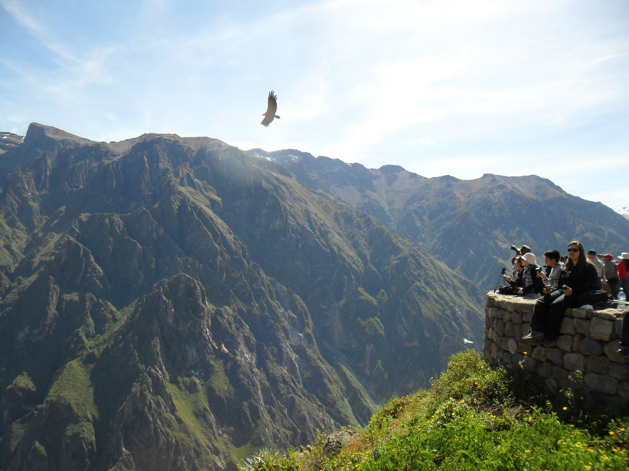 Combined Tour - Colca By Bus And Oasis Trek